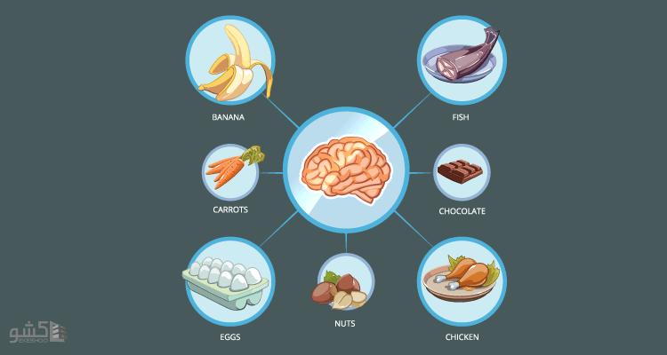 مواد مغذی برای تقویت هوش و حافظه
